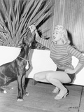 Jayne Mansfield sitting in Sweater with Dog Photo by  Movie Star News