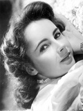 Elizabeth Taylor Lying Pose Classic Portrait Photo by  Movie Star News