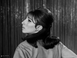 Barbra Streisand Portrait Facing Side View Photo by  Movie Star News