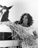 Jennifer Jones Feeding Horse with Hay Photo by  Movie Star News