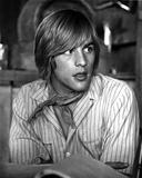 Don Johnson in Stripe Polo Portrait Photo by  Movie Star News
