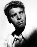 Burt Lancaster Pose in Classic Portrait Photo by  Movie Star News