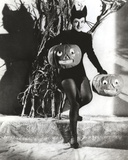 Paulette Goddard Posed with Pumpkin Photo by  Movie Star News