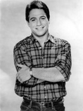 Tony Danza in checkered Polo Portrait Photo by  Movie Star News