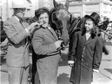 Abbott & Costello Posed with a Horse Photographie par  Movie Star News