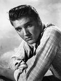 Elvis Presley Portrait in Plaid Polo Foto af  Movie Star News