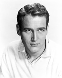 Paul Newman Portrait in Polo Shirt Photo by  Movie Star News