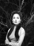Ann Blyth on a Serious Portrait Photo by  Movie Star News
