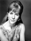 Julie Harris Classic Portrait Photo by  Movie Star News