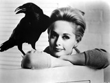 Tippi Hendren Posed in Classic Photo by  Movie Star News