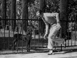 Fred Astaire Playing with Dog Photo by J Miehle