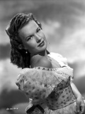 Gale Storm Posed in Dress Photo by  Movie Star News