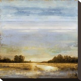 Pond's Edge Stretched Canvas Print by Eric Turner