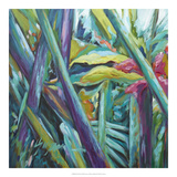 Bula Bula I Prints by Suzanne Wilkins