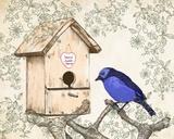 Home Sweet Home Poster by Veruca Salt