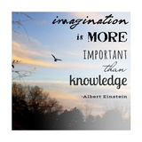 Imagination is More Important Than Knowledge - Albert Einstein Posters by Veruca Salt