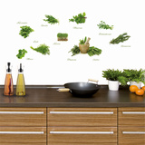 Different Herbs Wall Decal