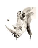 Rinoceronte Stampa di Philippe Debongnie