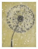 Dandelion Abstract I Posters by Tim O'toole