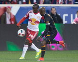Mls: Houston Dynamo at New York Red Bulls Photo by William Hauser