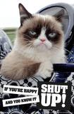 Grumpy Cat - Shut Up Posters