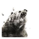 Bear Plakater af Philippe Debongnie