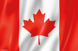 Furrowed Canadian Flag Print