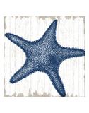 Seaside Starfish Plakater af  Sparx Studio