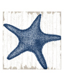 Seaside Starfish Kunstdrucke von  Sparx Studio