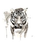 Tiger Plakater af Philippe Debongnie