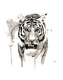 Tiger Prints by Philippe Debongnie
