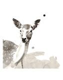 Deer Posters by Philippe Debongnie