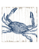 Seaside Crab Kunst von  Sparx Studio