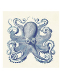 Octopus I Prints by  Sparx Studio