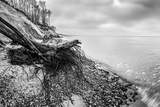 Wild Beach with Fallen Tree and Cliffs on a Winter, Cloudy Day. Waves on the Sea. Black and White. Photographic Print by PHOTOCREO Michal Bednarek