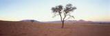 Crepúsculo en el desierto Lámina giclée por Chris Simpson