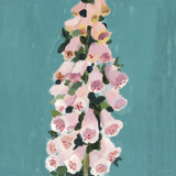 From My Garden - Foxglove Impressão giclée por Charlotte Hardy