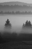 Misty Hills Giclee Print by Jon Hart Gardey