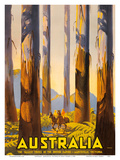 Australia - The Tallest Trees in the British Empire - Marysville, Victoria Prints by Percy Trompf