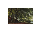 Forest Scene from Soro, Denmark Premium Giclee Print by Carl Frederic Aagaard