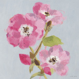 From My Garden - Rose Giclee Print by Charlotte Hardy