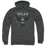 Hoodie: Air Force- Streaking Eagle Shield Pullover Hoodie