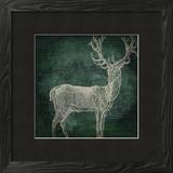 Emerald Deer Framed Giclee Print