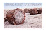 Petrified Forest National Park, Arizona - Petrified Wood Prints by  Lantern Press