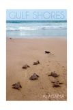 Gulf Shores, Alabama - Sea Turtles Hatching Art by  Lantern Press