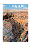 Petrified Forest National Park, Arizona - Daytime Close Up Posters by  Lantern Press