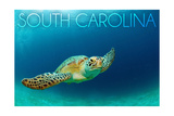 South Carolina - Sea Turtle Poster by  Lantern Press