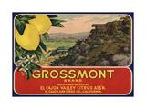 Grossmont Brand - El Cajon, California - Citrus Crate Label Art by  Lantern Press