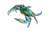 Blue Crab 2 - Icon Poster by  Lantern Press
