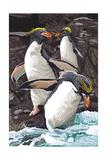 Macaroni Penguins Art by  Lantern Press